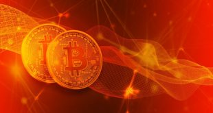 Bitcoin jest nie do powstrzymania! Steve Wozniak pozytywnie o Bitcoinie i Blockchainie. Kryptowaluty są zaskakująco innowacyjne. Bitcoin walutą Internetu