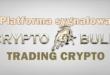 Platforma sygnałowa CryptoBull