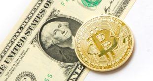 Bitcoin przekracza 50% dominacji rynku kryptowalut