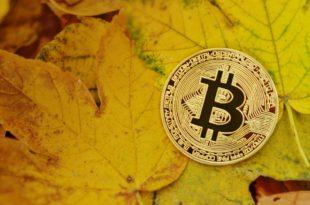 Kurs XRP powyżej 0.50 USD, co na to wpłynęło Bitcoin Cash cena powyżej $600. Bitmain wprowadza nowe koparki BTC, antminery S15 i T15