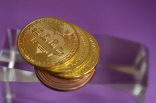 Steve Wozniak również obstaje za technologią Bitcoina! Czy Cryptopia wznowi działalność Indie mają miesiąc na regulacje kryptowalut!