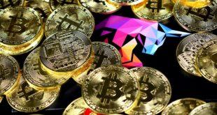 Kierunek 100 tys. USD dla Bitcoina. Kapitalizacja BTC sięga 60% wartości rynku kryptowalut. Bitcoin będzie wart $21000 do końca 2019 roku. Co z altcoinami