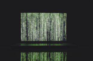 Niebezpieczne zakupy w internecie! Nowy atak na bezprzewodowe myszki, klawiatury, urządzenia od Logitech. Uwaga na nowy ransomware
