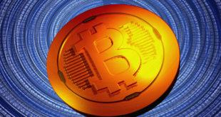 Bitcoin to przyszłość tak twierdzi były doradca Trumpa! Coraz więcej kobiet kupuje kryptowaluty! Wolumen BTC transakcji osiąga rekordowe poziomy