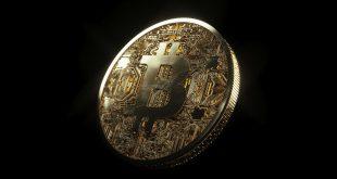 Bitcoin po 25 000 USD do końca roku Cena Bitcoina zaliczyła ostry spadek. Liczba wielorybów Bitcoina bije rekordy! PCC a bitcoin