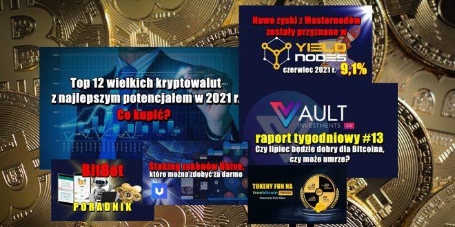 Top 12 wielkich kryptowalut z najlepszym potencjałem w 2021 r. Co kupić Czy lipiec będzie dobry dla Bitcoina, czy może umrze Yieldnodes – czerwiec