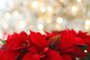 Życzenia na nadchodzące święta
